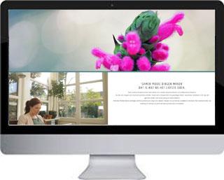 WordPress voorbeeld Filmmaker