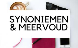 Synoniemen, meervoud en SEO
