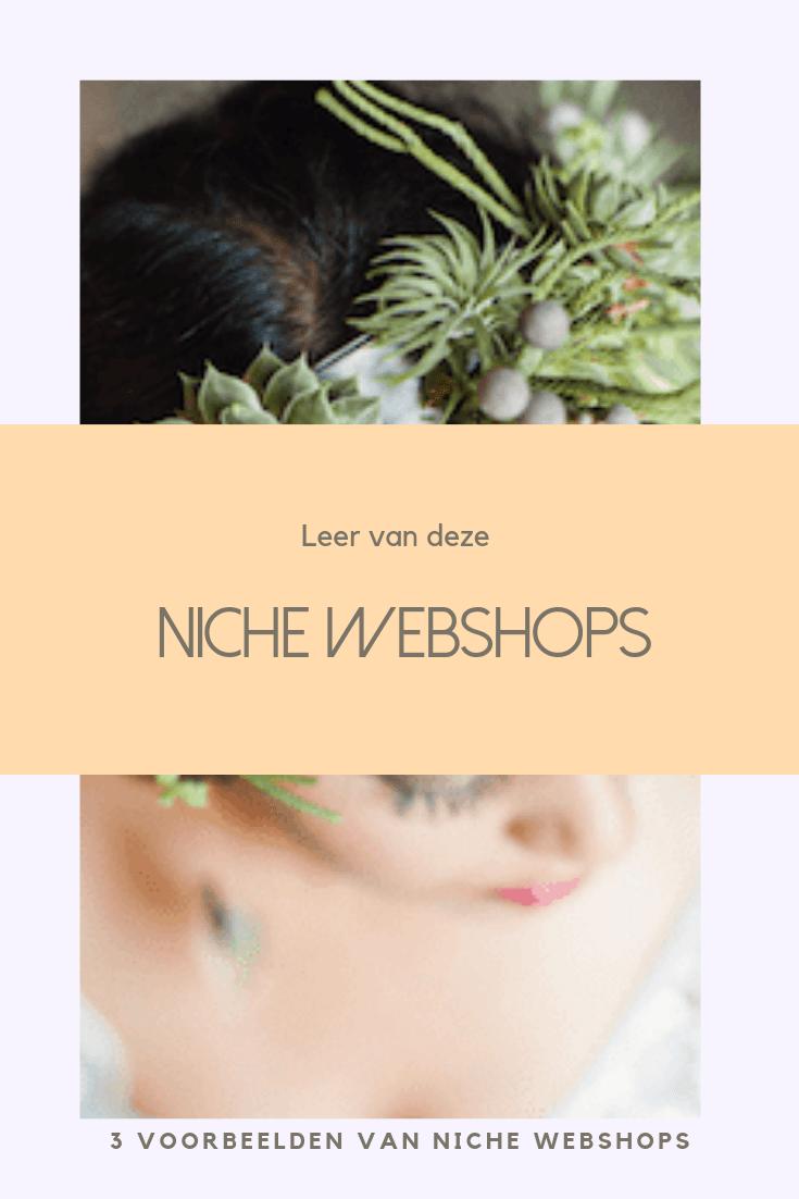 niche webshops