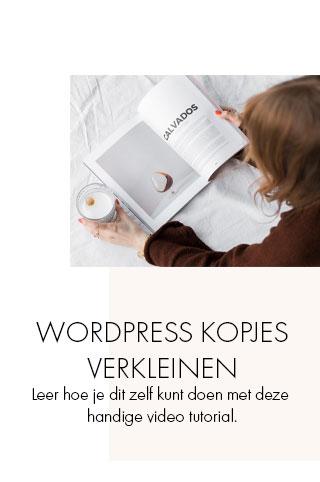 wordpress kopjes verkleinen